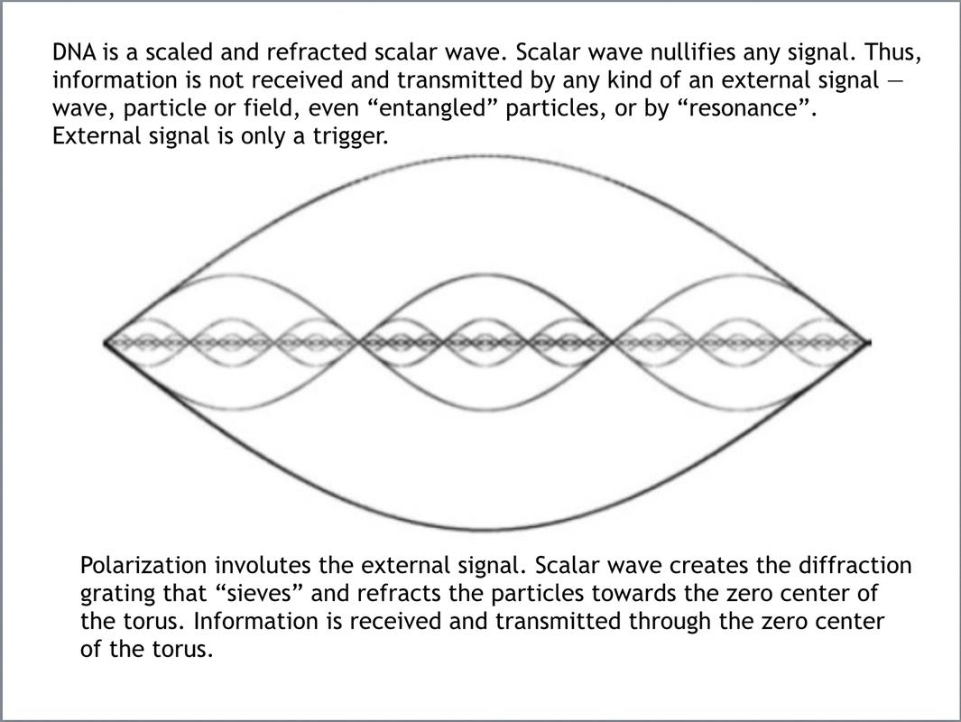 Theory / TheWaveMatrix | QUANTUM INFORMATION-WAVE TECHNOLOGY